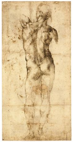 MICHELANGELO, Standing Male Nude, Seen from the Rear (recto)  c. 1503  Pen and brown ink, 387 x 195 mm