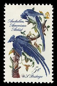 "John James Audubon U. stamp featuring his engraving ""Columbia Jay,"" issued in Henderson, KY, on Nov. Audubon is noted for documenting the birds of America through his artwork and written descriptions. Timbre Collection, Famous Artists Paintings, Birds Of America, John James Audubon, Vintage Stamps, Rare Stamps, Vintage Birds, Vintage Ephemera, Custom Stamps"
