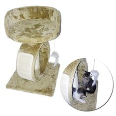 Cat Tree with Bed & Scratching Post Sisal for Kittens and Small Cats. Your Indoor Cat will love to perch in this multi function Condo-Bed-Lounge-Tower Activity. Made for Cat Lovers -- Click on the sponsored Amazon image for additional details.