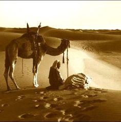 Camel and prayer.