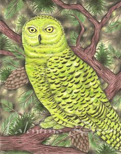 Green Owl Barn artwork drawing $99 - $149 size preference click website Drawing Artwork, Drawings, Abstract Artwork, Artwork, Abstract