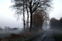 Natur | Fotokunst Ulrike Adam