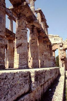 Tempio di Poseidone - Paestum, Campania