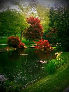 Spring photo of one of the many water gardens at Gibbs Garden