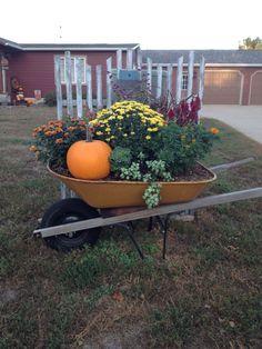 Fall in an old wheelbarrow