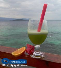 None for a refresh in- between dives Magic Island, Dive Resort, Island Resort, Cebu, Fun Drinks, Glass Of Milk, Philippines, Alcohol, Amazing