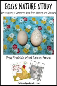 Eggs Nature Study Free Printable Word Search {The Nature Book Club Link Up} Book Activities, Preschool Activities, Outdoor Activities, Free Printable Word Searches, Free Preschool, Preschool Eggs, Animal Books, Nature Study, Nature Journal