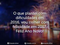 O que plantei com dificuldades em 2016, vou colher com felicidade em 2017. Feliz Ano Novo!