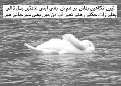 Urdu Shairi — Terey  nigahain badalney par ab hum ney bhi apni...