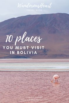 Breathtaking deserts, colorful lakes and alpacas running around... #Bolivia will give you a fair share of pinch me I'm dreaming kind of moments. If you're planning a trip to #SouthAmerica, here are 10 places you cannot miss in Bolivia!