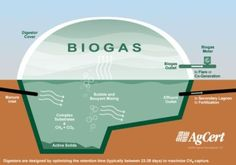 Biogas plants are a great way to reduce environmental pollution. Well, a biogas power plant is an anaerobic digestion system which is designed specially for the purpose of generating energy. You must be wondering when anaerobic.