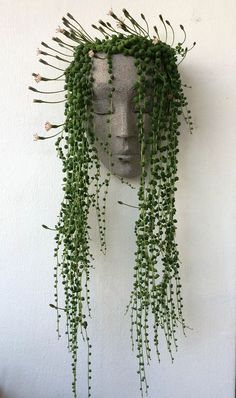 Vertical planter planter headplanters concrete planter wall planter wall pot for. Vertical planter planter headplanters concrete planter wall planter wall pot for plants wall art face planter head p Succulent Wall Planter, Vertical Planter, Hanging Succulents, Planter Pots, Garden Planters, Fruit Garden, Vertical Garden Wall, Vertical Bar, Cacti And Succulents
