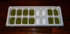 How to make and freeze pesto!