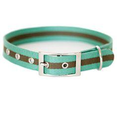 KISS MY MUTT 'Sea Anchor' Striped Collar Item:17004786 $13.99 PetSmart