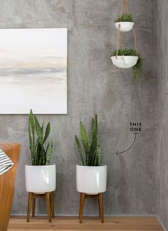What's my absolute favorite part of finishing a Fixer Upper? That's easy—adding plants. Here's the scoop on the low maintenance plants I chose for Season 4!