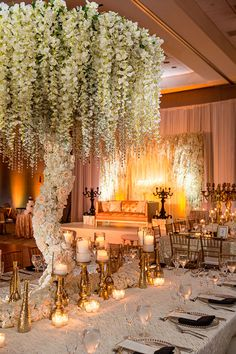 87 Wondrous Wedding Tree Decoration Lights Ideas - Decorations are a main part of any sort of celebration. In the same way, you may also cleverly use the decorations from the last festival and provide . by Joey Indian Wedding Receptions, Wedding Reception Design, Wedding Mandap, Wedding Table, Wedding Ideas, Wedding Entrance, Wedding Inspiration, Wedding Dresses, Arab Wedding