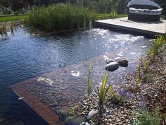 Clear Water Revival specialise in the installation of natural swimming pools using cutting edge technology and a chemical free approach. Swimming Pool Pond, Natural Swimming Ponds, Natural Pond, Garden Pool, Backyard Pools, Pool Decks, Pool Landscaping, Pond Waterfall, Small Pools