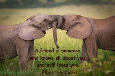 A friend is someone who knows all about you and still loves you. Elbert Hubbard #friendship #quote on http://buybestessays.com/blog/p806/