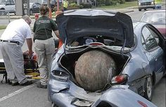 Bizarre Car Accident Photo