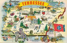 Vintage Travel Postcard