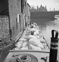 Miss March helps to unload the cargo of flour from her barge Canal Boats England, Old London, Vintage London, Canal Barge, Old Time Photos, Steam Boats, Old Boats, Birmingham Uk, Narrowboat