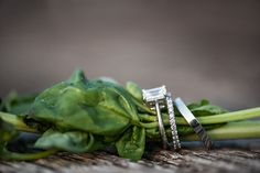 stacked on greenery   Images by Julia Newman Photography
