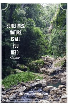 Camp Quotes, Hiking Quotes, Travel Quotes, Quotes Quotes, Selfie Quotes, Beautiful Places Quotes, Beautiful Pictures, Mountain Quotes, Into The Woods Quotes
