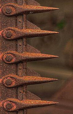 Arresting Form and fabulous rust patina Rusted Metal, Metal Art, Wabi Sabi, Art Texture, Rust Never Sleeps, Rust In Peace, Peeling Paint, Old Farm, Art Graphique