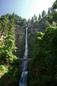 Multnomah Falls, Columbia River Gorge, Most Beautiful Pictures, World Pictures, Beautiful Waterfalls, Amazing Nature, Places To Go, Scenery, I Am Awesome