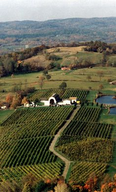 Millbrook Vineyards & Winery in Millbrook, near Rhinebeck, New York.