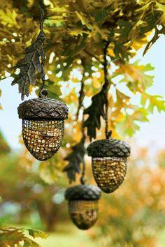 Oh my god. If I ever get a garden, I'm going to make bird feeders like these.