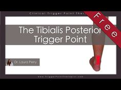 The Tibialis Posterior Trigger Point (Free Full Video) - https://www.youtube.com/watch?v=XeB3nX76ez4