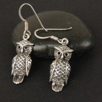 -Earrings-Taste Of India - Owl Jewelry, India Jewelry, Jewelry Necklaces, Jewellery, Owl Earrings, Drop Earrings, Ethnic Wear Designer, Baubles And Beads, Gadgets And Gizmos