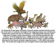 Australia's Megafauna... thought to be hunted to extinction by Ice Age hunters