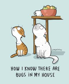Cats And The Cradle Product I Love Cats, Crazy Cats, Cool Cats, Funny Doodles, Cute Doodles, Round Robin, Cat Comics, Yellow Cat, Cat Quotes