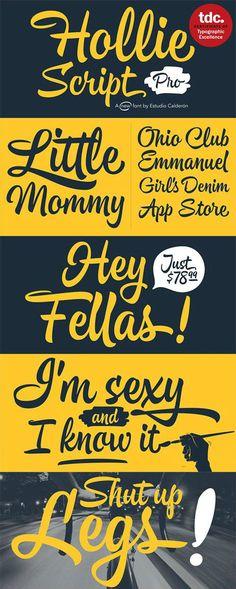 Hollie Script Font Family 2 Fonts | OTF | WOFF
