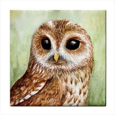 Tile Coaster From Original Painting Art Bird 57 Owl