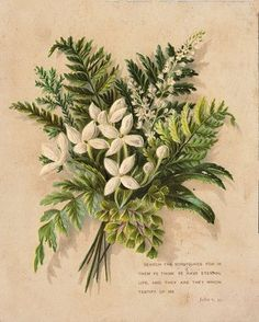 Free Vintage Clip Art - Bouquet with Ferns - The Graphics Fairy