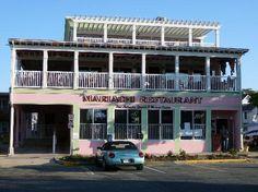 Mariachi Restaurant | Rehoboth Beach, DE