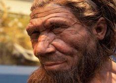 IBERIA. (Pre-Roman Spain) - Una nueva datación de unas enigmáticas pinturas rupestres en tres cuevas españolas muestra que se ejecutaron hace unos 65.000 años, más de 20.000 años antes de que los humanos modernos, los Homo sapiens, llegaran a la península ibérica. Los artistas solo pudieron ser neandertales. El hallazgo es la portada de la revista Science.