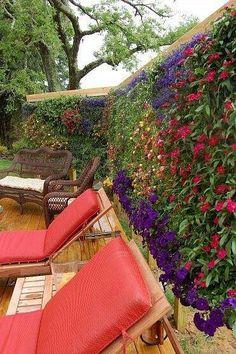 Facebook - The Urban Gardener