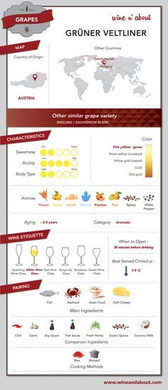 Grapes: The Grüner Veltliner is a variety of white wine variety grape originally of Austria, and is well known for being an easy food-pairing wine #infografía