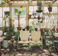 Terrasse véranda esprit serre atelier avec mobilier vintage et accumulation de…
