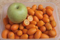 Adquira uma base sólida de conhecimentos em nutrição