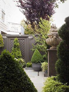 I like the dark tones behind the greenery. Pinned to Garden Design by Darin Bradbury.