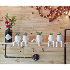 Ceramic + Succulents Vivarium, Flora, Succulents, Ceramics, Table Decorations, Furniture, Design, Home Decor, Arquitetura