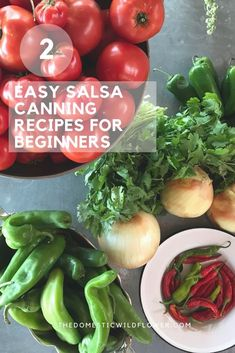 Making homemade salsa is a great way to use up all of the extra tomatoes from your garden and store them for winter. Discover how to make these 2 Easy Salsa Canning Recipes for Beginners. Canning Homemade Salsa, Salsa Canning Recipes, Easy Canning, Canning Salsa, Canning Tomatoes, Salsa Recipe, Salsa For Beginners, Recipes For Beginners, Water Bath Canning