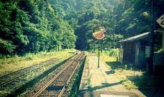 ある夏の田舎駅にて~前編 の画像|ToA′s Factory Beautiful World, Beautiful Places, Summer Memories, Japan Photo, Anime Scenery, Landscape Photos, Nature Photos, Trees To Plant, Countryside