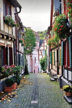 Charming towns of Rhine Valley, Unkel / Germany                              …