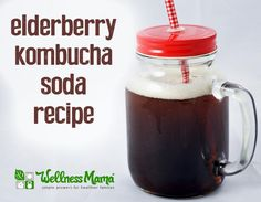 Elderberry Kombucha Soda-Delicious elderberry kombucha soda combines the immune boosting benefits of elderberry with the enzymes and probiotics in kombucha for a delicious and health promoting drink.